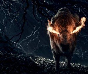 American Gods - bull