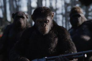 "Кадр из фильма ""Планета обезьян: Война"""