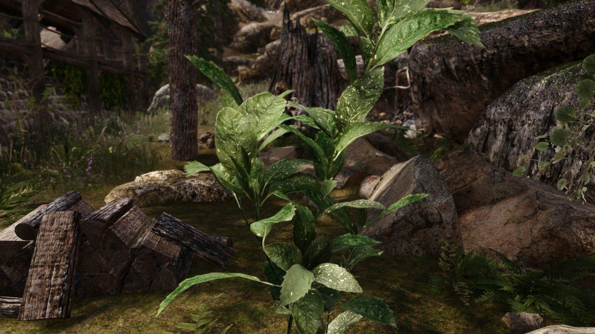 Skyrim 3D Landscapes